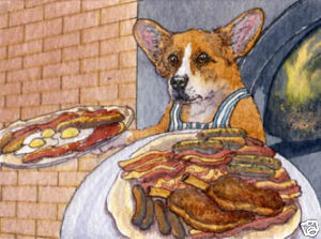When Do U Start Feeding Puppies Dog Food